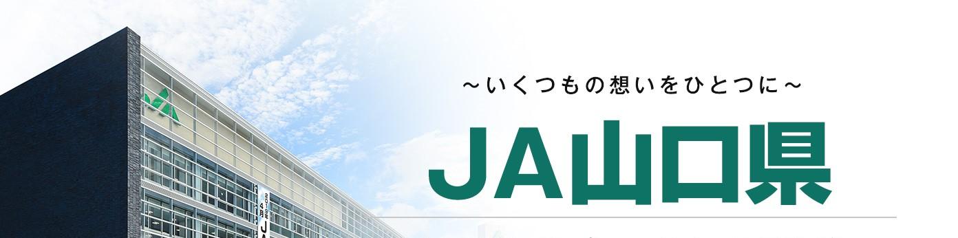 JA山口県